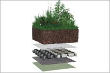 Semi-intensive grønne tak